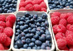 Mærk forskellen: mere frugt og grønt i hverdagen