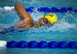 Stort udvalg af smarte Arena svømmebriller til konkurrence- og motionsvømning til favorable priser